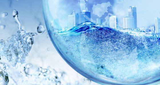 Zwendel, zeepbellen en de financiële crisis