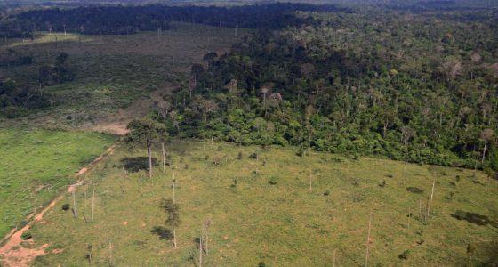 Bolsonaro opent aanval op Amazoneregenwoud