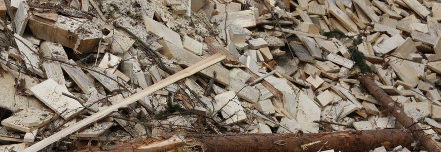 Biomassa toont zwakte GroenLinks