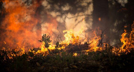 Extreem weer onderstreept urgentie klimaatverzet