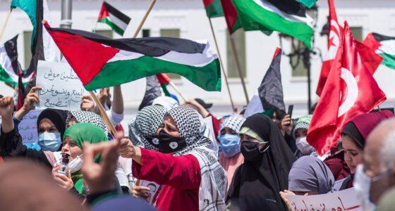 Lessen uit de Palestijnse opstand